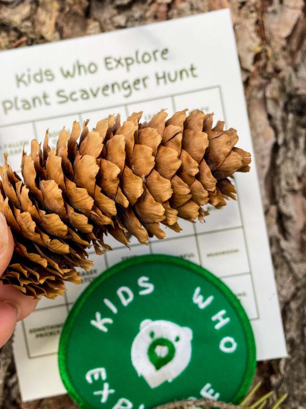 kid activity scavenger hunt